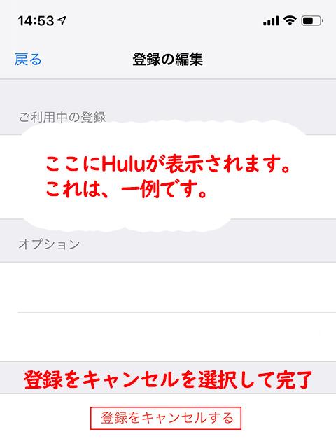 iTunes-store利用4